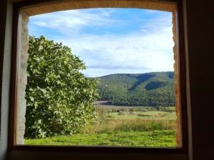 ventana_comedor